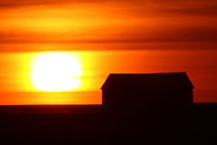 Setting sun backlighting farm buildings Royalty Free Stock Image