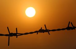 Setting sun behind barbed wire Royalty Free Stock Images