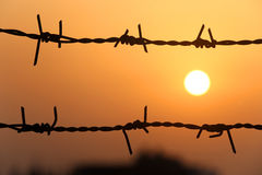 Setting sun behind barbed wire Royalty Free Stock Photo