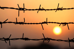 Setting sun behind barbed wire Royalty Free Stock Image