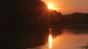Sunset over a river stock video
