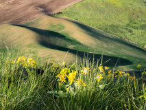 Setting sun creates long shadows on rolling hills Royalty Free Stock Photo