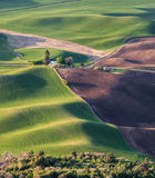 Setting sun creates long shadows on rolling hills Royalty Free Stock Photography