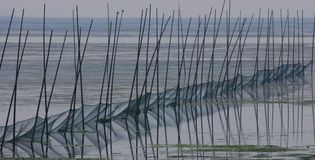 Fishing nets in the lake stock photos