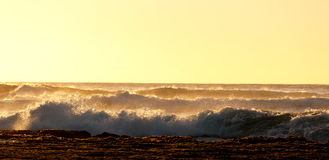 Setting sun lights crashing waves Stock Image