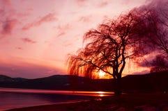 Setting Sun on Okanagan Lake Stock Images