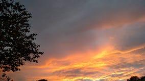 Setting sun. Orange sky sun Stock Photography
