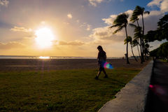 Setting sun over beach at Ala Moana Park, with flares Royalty Free Stock Photo