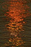 Setting sun reflected in the surface of a river Royalty Free Stock Photo