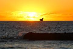The setting sun on the sea in a tropical island, Fiji stock photo