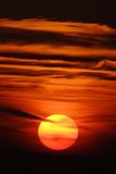 Setting Sun - Vertical Royalty Free Stock Photo