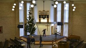 Setting up christmas tree in church stock video