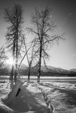 Setting Winter Sun Stock Photography