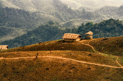 Settlement in Nagaland, India. Traditional tribal settlement in remote region of Nagaland, India Stock Images