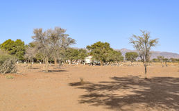 Settlement in Namibia. Rural settlement seen in Namibia, Africa Stock Photography