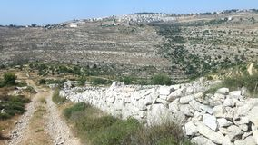 Settlement and path in palestine. A mediterran scenery wirh auch white stone wall and a jewish settlement in the background Stock Photography