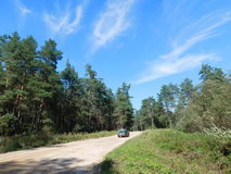 Settlement road. Royalty Free Stock Photography
