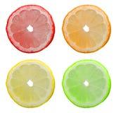 Settori di un limone immagini stock libere da diritti