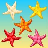 Setu pięć koloru rozgwiazda na błękitnym Obraz Royalty Free