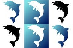 Setu sześć sylwetki delfin na białym i błękitnym Zdjęcie Royalty Free