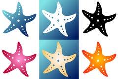 Setu sześć sylwetki rozgwiazda Zdjęcia Royalty Free