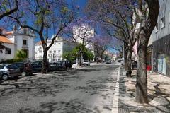 Setubal, Portugal. Royalty Free Stock Photo