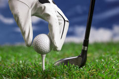 Setup golfbollen Royaltyfri Foto