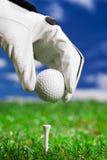 Setup golfbollen! Royaltyfria Foton