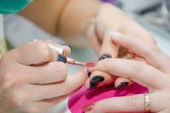 Setzen des Lacks auf Nägel Verarbeitung von Nägeln im Kosmetiksalon Stockfoto