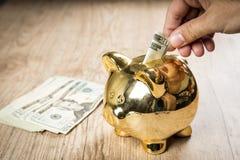 Setzen 20 Dollar in ein Sparschwein Lizenzfreie Stockfotos