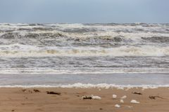 Setzen Sie †‹â€ ‹Schaum Egmond aan Zee, die Niederlande auf den Strand stockfoto