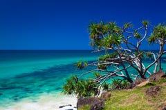 Setzen Sie Ansicht in Burleigh-Köpfe Nationalpark, Gold Coast, Australi auf den Strand Stockfoto