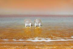 Setzen Sie auf dem Toten Meer, ein sonniger Tag im Mai auf den Strand Lizenzfreies Stockfoto