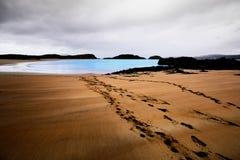 Setzen Sie bei Adds Forest Park mit Spuren im Sand auf den Strand, der zu den Ozean führt Stockfotos