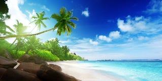 Setzen Sie in der Sonnenuntergangzeit auf Mahe Insel in Seychellen auf den Strand lizenzfreie stockfotos