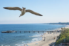 Setzen Sie FO Kolobrzeg, Ostsee, Polen auf den Strand Lizenzfreies Stockbild