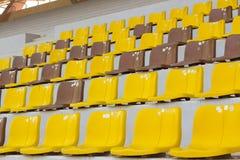 Setzen Sie gelbes Braun der Haupttribüne Stockbilder