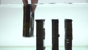 Setzen Sie HDD in das Wasser ein stock video footage