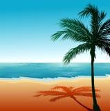 Setzen Sie Hintergrund 6 auf den Strand Lizenzfreies Stockfoto
