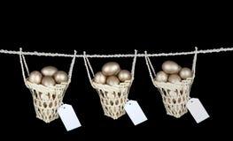 Setzen Sie Ihre Eier auf verschiedene Körbe mit Exemplarplatz Stockbilder
