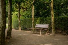Setzen Sie im Park auf die Bank, der durch Bäume und eine Hecke umgeben wird lizenzfreie stockfotografie
