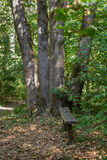 Setzen Sie im Park in einem bequemen Platz auf die Bank Stockfotografie