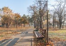 Setzen Sie im Park am nebelhaften Morgen des Herbstes auf die Bank Stockfoto