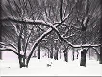 Setzen Sie im Park zur Winterzeit auf die Bank Stockbilder
