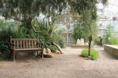 Setzen Sie innerhalb eines Gewächshauses im botanischen Garten Gothenburgs, Schweden auf die Bank Lizenzfreie Stockfotografie