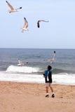 Setzen Sie Jungen und Vögel auf den Strand Lizenzfreie Stockfotos