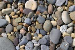 Setzen Sie Kiesel auf den Strand lizenzfreie stockfotografie