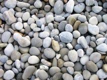 Setzen Sie Kiesel auf den Strand. Stockfotografie