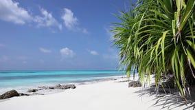 Setzen Sie in Malediven-Insel Fulhadhoo mit weißem sandigem Strand und Meer auf den Strand stock footage