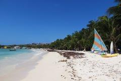 Setzen Sie mit blauem Meer und Palmen im Hintergrund auf den Strand Lizenzfreies Stockfoto